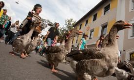 Das Kulturjahr 2011 im Rückblick
