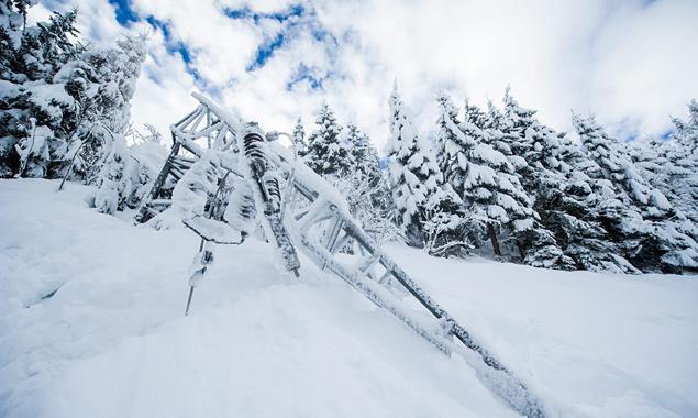 Im Gegensatz zum Wintereinbruch nach Weihnachten traten bei den Schneemengen Ende Jänner keine größeren Probleme bei der Stromversorgung auf. Foto: Expa/Gruber