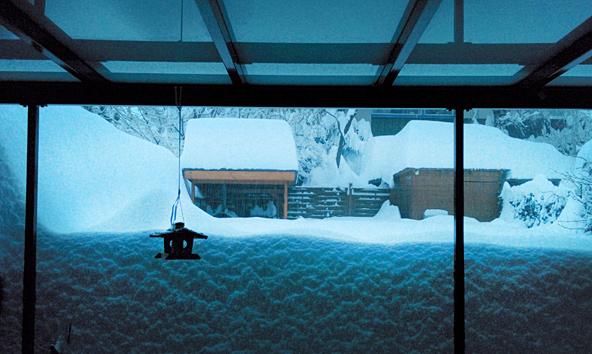 Schneefoto-Florian-Feichter
