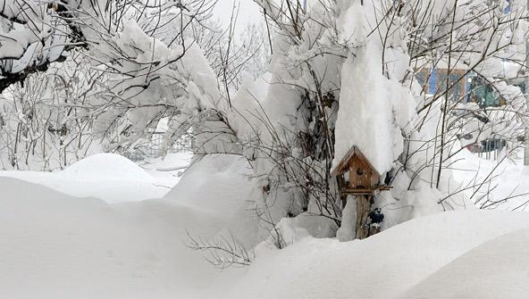 Schneefoto-Helga-Egartner