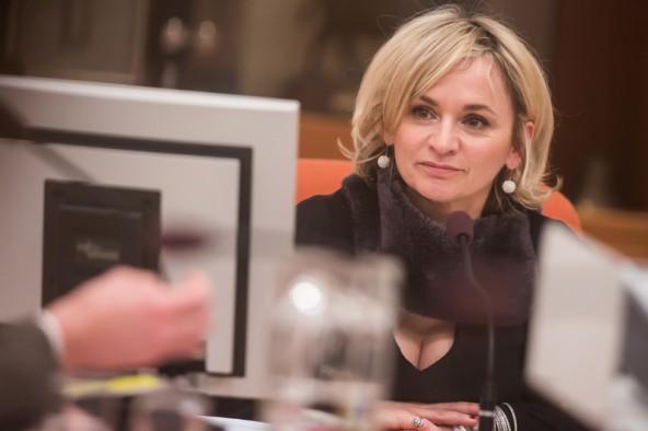 Im ersten Teil der Sitzung hatte Bürgermeisterin Elisabeth Blanik noch alle Mandatare auf ihrer Seite. Fotos: Philipp Brunner