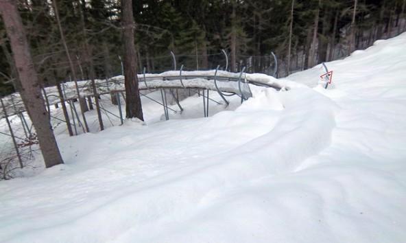 """Tief verschneit und vereist präsentierte sich vor wenigen Tagen noch der """"Osttirodler"""". Die Räumung wäre teuer und gefährlich, deshalb steht das Fun-Gerät still. Foto: Lienzer Bergbahnen."""
