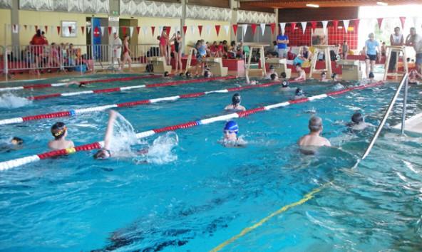 Rund 150 NachwuchsschwimmerInnen kämpfen beim Tigas-Cup um persönliche Bestzeiten. Foto: Stadtgemeinde