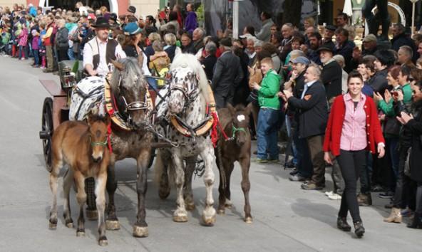 Um 11.45 Uhr startet der Festumzug mit Wägen aus allen Osttiroler Gemeinden.