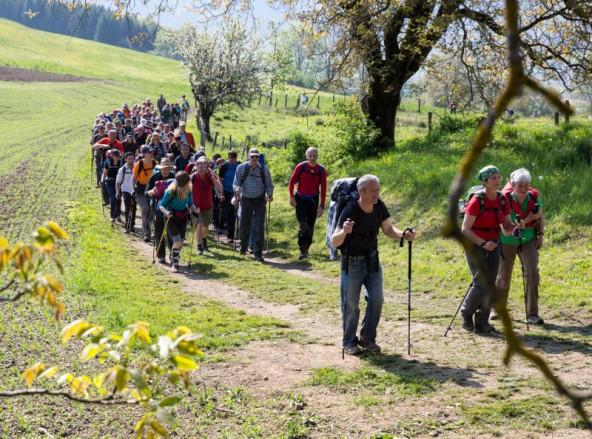 Rund 6.000 Menschen nahmen an der Wallfahrt nördlich von Klagenfurt teil. Fotos: Expa/Groder