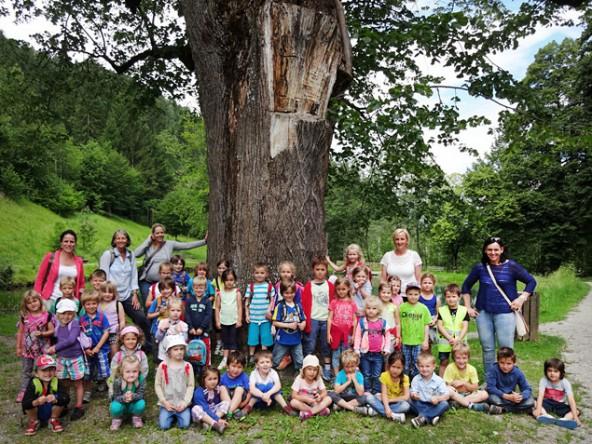 Die Krirpse des Kindergartens Tristach wanderten für ein letztes Foto zur alten Linde am Teich von Schloss Bruck.
