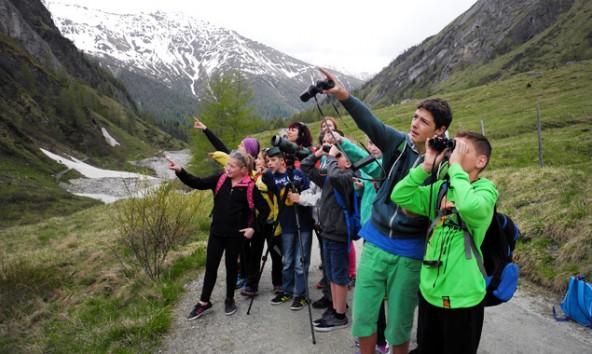 Die Klasse 2a der NMS Weer durfte einen ganz Tag lang Wildtiere beobachten. Im Bild das Kalser Ködnitztal mit dem Großglockner. Foto: Nationalpark