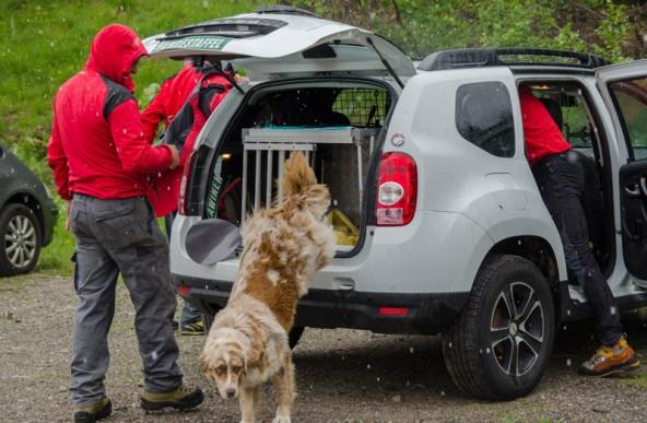 Auch eine Hundestaffel suchte nach dem vermissten Dölsacher Pensionisten.