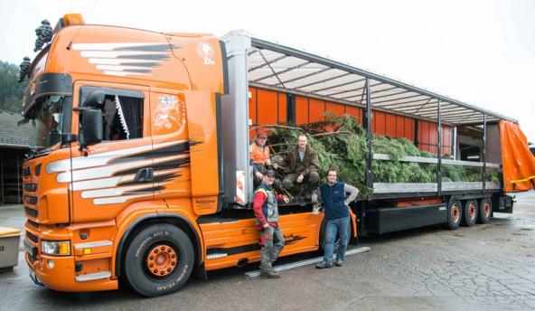 Daniel Petutschnig (rechts) steuerte den Laster mit dem Lienzer Christbaum nach Wien. Foto: Lenzer