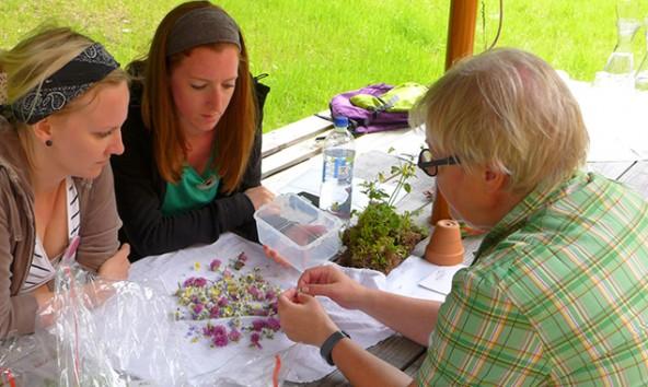 Liesa Rechenburg erklärt die Nutzung der Wildkräuter und Blumen.