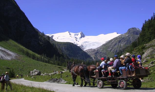 Wanderbusse, Hüttentaxis aber auch die Fahrt vom eigenen Heim ins Hotel sollen in Zukunft leichter zu finden sein. Foto: NPHT/Gruber