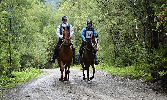 Der Dauerregen hielt die Reiter nicht vom Wettbewerb ab. Fotos: Reitsportverein Pegasus Lavant