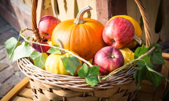 Der Herbst wird in Lienz mit Gesang und Schmankerln begrüßt. Fotos: Stadt Lienz/Brunner