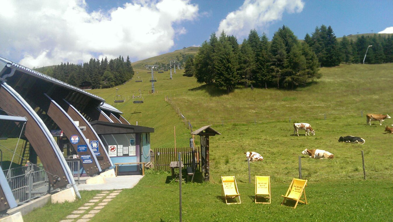 Wo letztes Wochenende noch Kühe in der Sonne lagen, werden bald wieder die Schifahrer unterwegs sein.