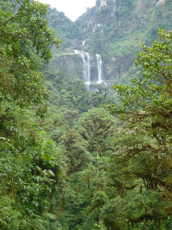 Soviel zum Umweltschutz: Dieser Nationalpark in Cochabamba könnte bald Geschichte sein, denn ein großes Wasserkraftwerk ist geplant.