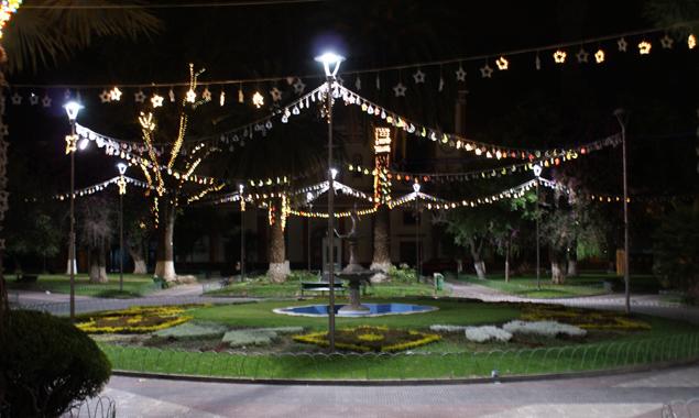Die Weihnachtsbeleuchtung hängt auf Palmen und auch sonst unterscheidet sich das Weihnachtsfest in Bilivien ein wenig von dem in Österreich. Fotos: Sarah Kollnig