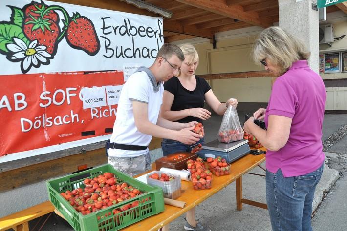 erdbeeren-lebenshilfe-artikel